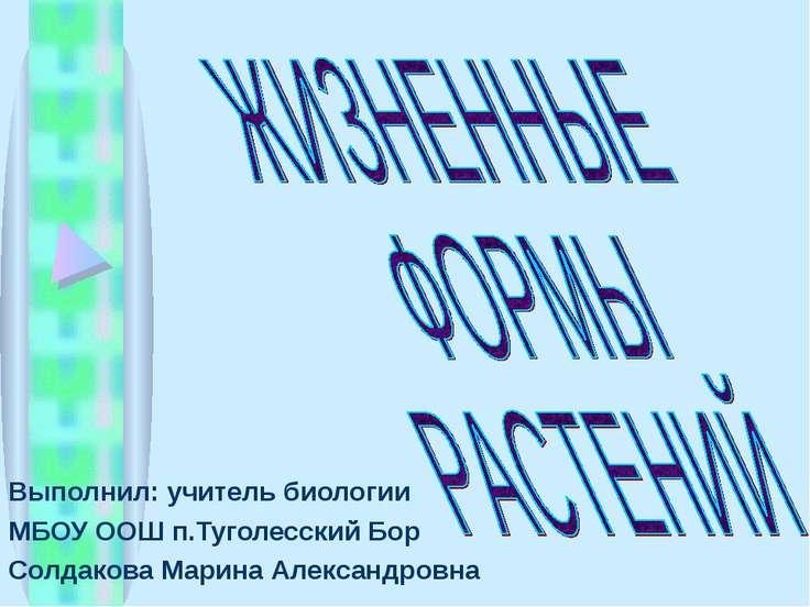 Выполнил: учитель биологии МБОУ ООШ п.Туголесский Бор Солдакова Марина Алекса...