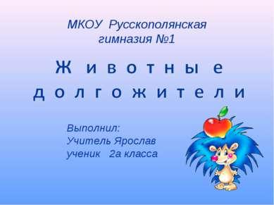 МКОУ Русскополянская гимназия №1 Выполнил: Учитель Ярослав ученик 2а класса