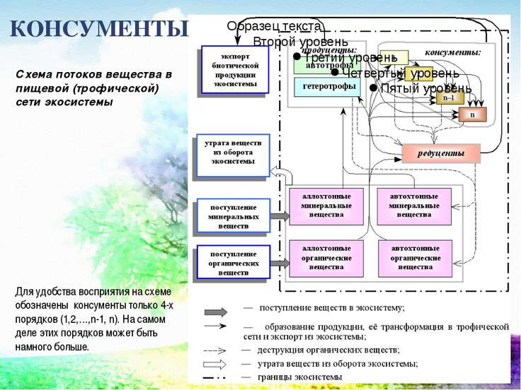 КОНСУМЕНТЫ Схема потоков