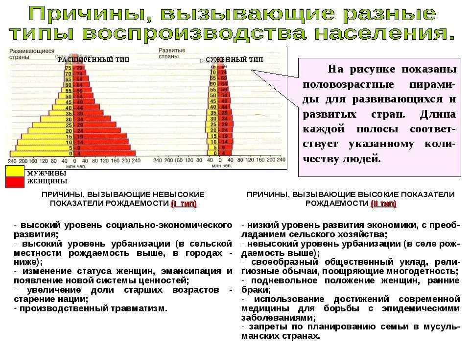 На рисунке показаны половозрастные пирами-ды для развивающихся и развитых стр...