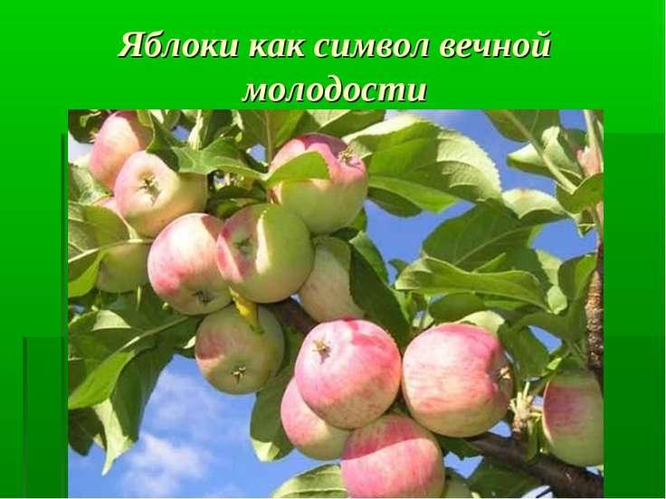 Яблоки как символ вечной молодости Как мы знаем из мифов, все боги обладали б...