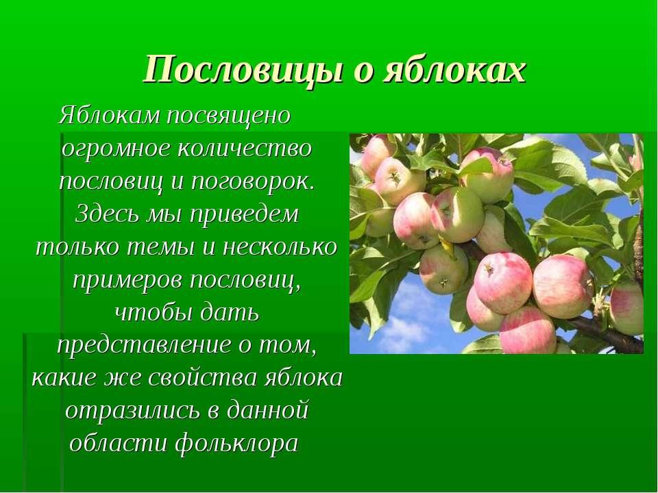 Пословицы о яблоках Яблокам посвящено огромное количество пословиц и поговоро...