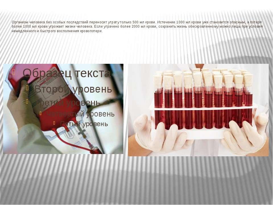 Организм человека без особых последствий переносит утрату только 500 мл крови...