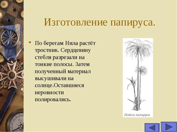 Изготовление папируса. По берегам Нила растёт тростник. Сердцевину стебля раз...