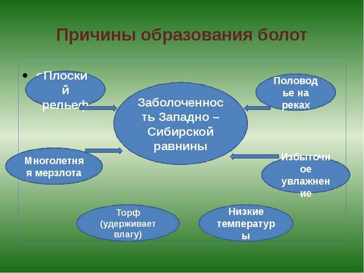 Причины образования болот схема Заболоченность Западно – Сибирской равнины Пл...