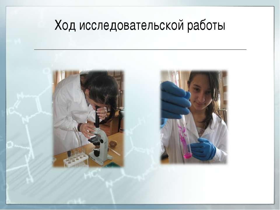 Ход исследовательской работы