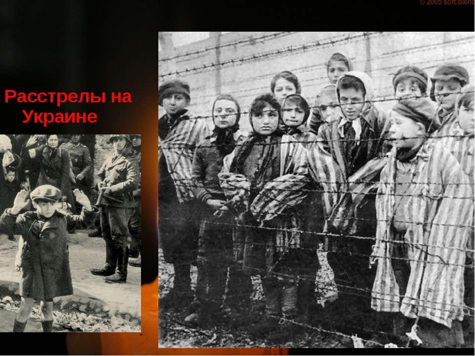 nazi genocide essay