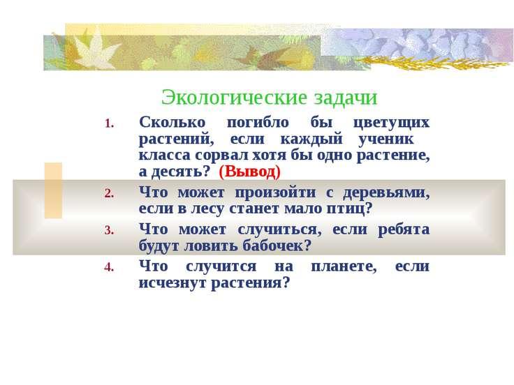 Экологические задачи Сколько погибло бы цветущих растений, если каждый ученик...