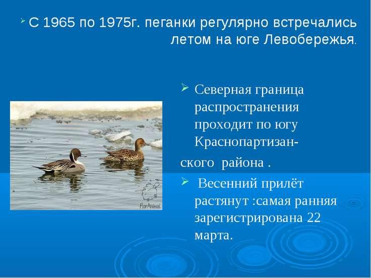 Северная граница распространения проходит по югу Краснопартизан- ского района...