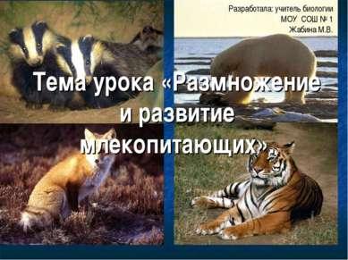 Тема урока «Размножение и развитие млекопитающих». Разработала: учитель биоло...