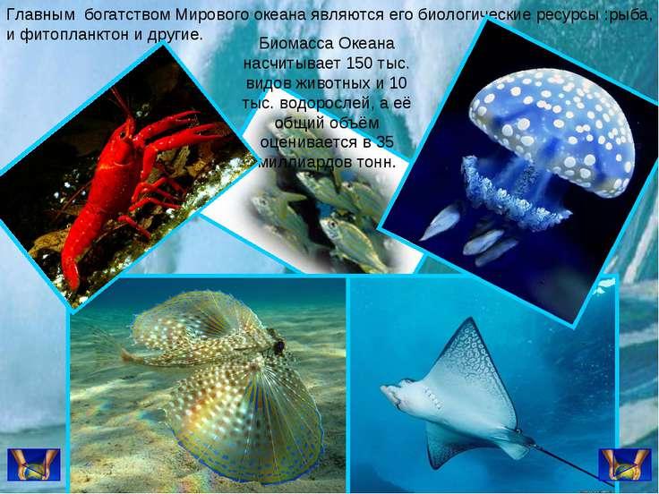 Главным богатством Мирового океана являются его биологические ресурсы :рыба, ...