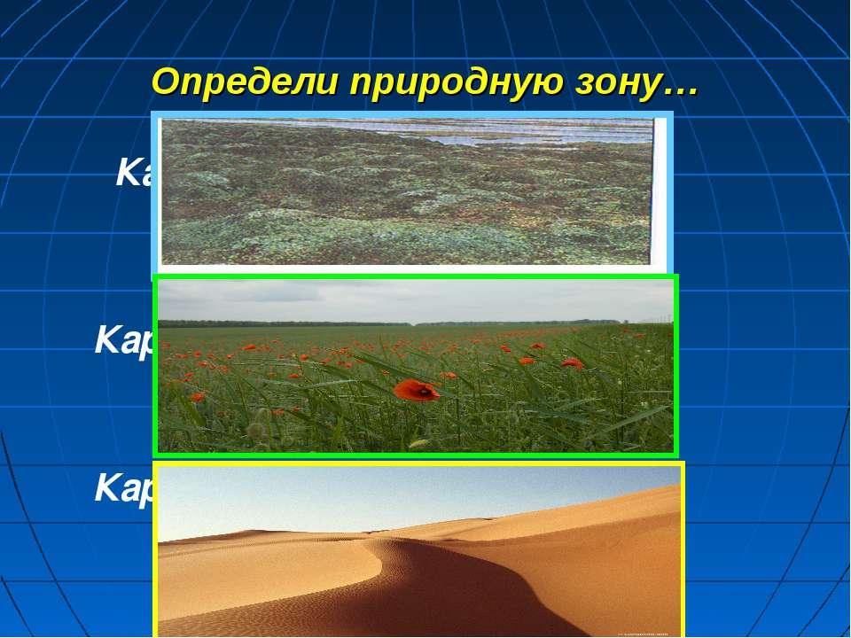 Определи природную зону… Карточка 1 Карточка 2 Карточка 3