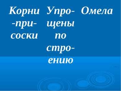 Корни-при-соски Упро-щены по стро-ению Омела