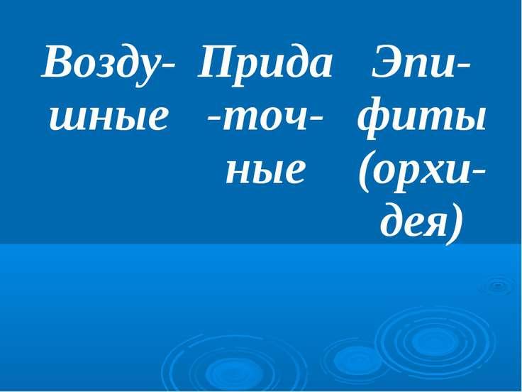 Возду-шные Прида-точ-ные Эпи-фиты (орхи-дея)