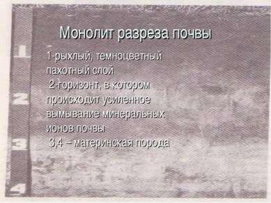 Монолит разреза почвы 1-рыхлый, темноцветный пахотный слой 2-горизонт, в кото...