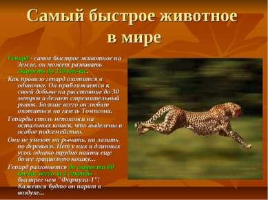 Самый быстрое животное в мире Гепард - самое быстрое животное на Земле, он мо...