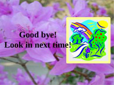 Good bye! Look in next time!