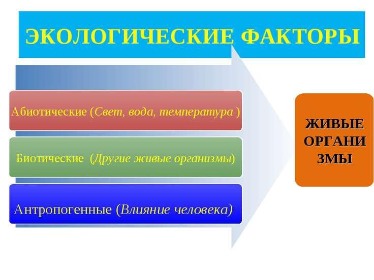 ЭКОЛОГИЧЕСКИЕ ФАКТОРЫ Абиотические (Свет, вода, температура ) Биотические (Др...