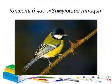 Классный час :«Зимующие птицы»
