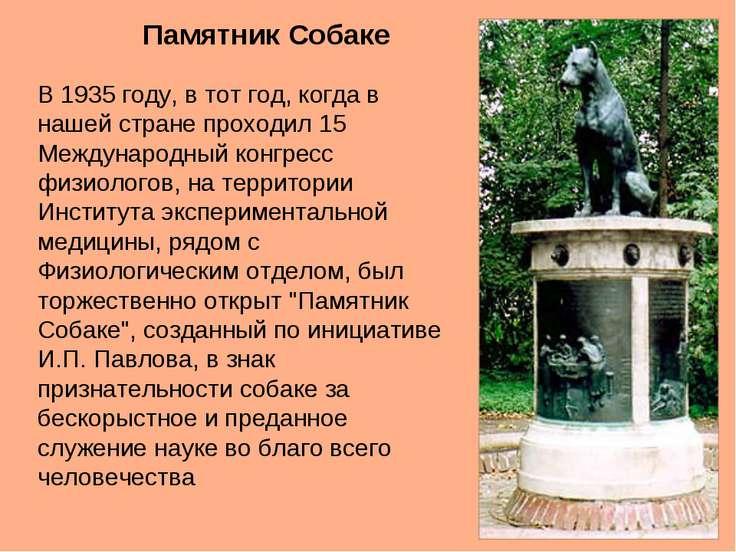 Памятник Собаке В 1935 году, в тот год, когда в нашей стране проходил 15 Межд...