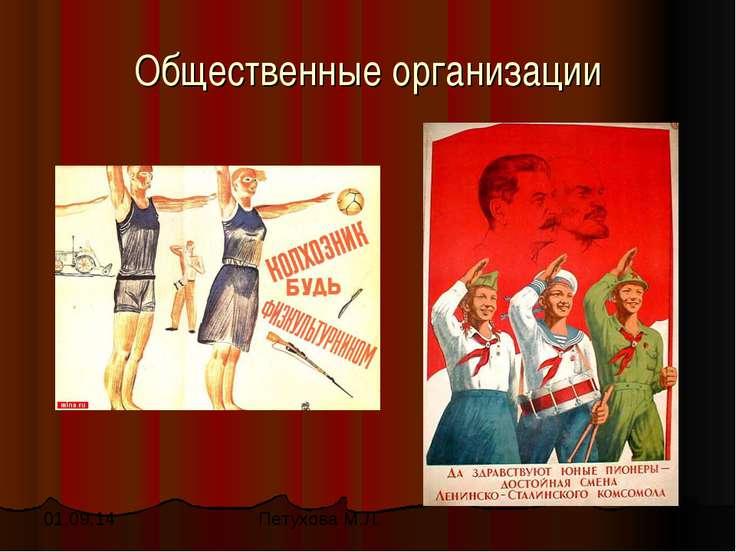 Общественные организации Петухова М.Л.