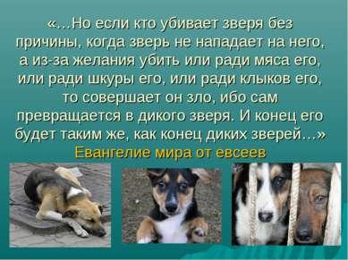 «…Но если кто убивает зверя без причины, когда зверь не нападает на него, а и...