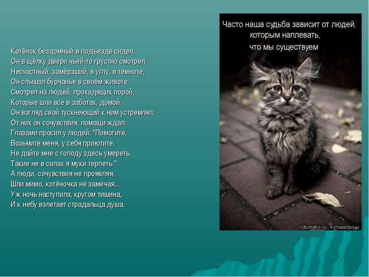 Котёнок бездомный в подъезде сидел, Он в щёлку двери чьей-то грустно смотрел....