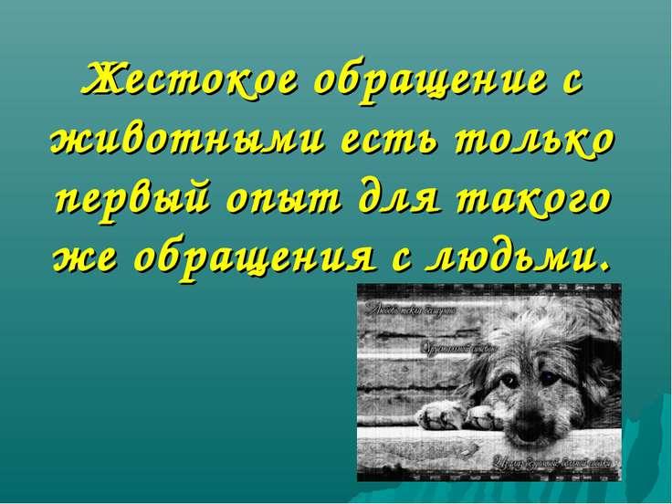 Жестокое обращение с животными есть только первый опыт для такого же обращени...