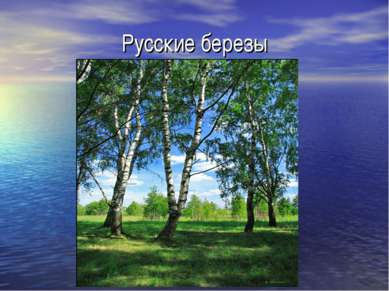 Русские березы