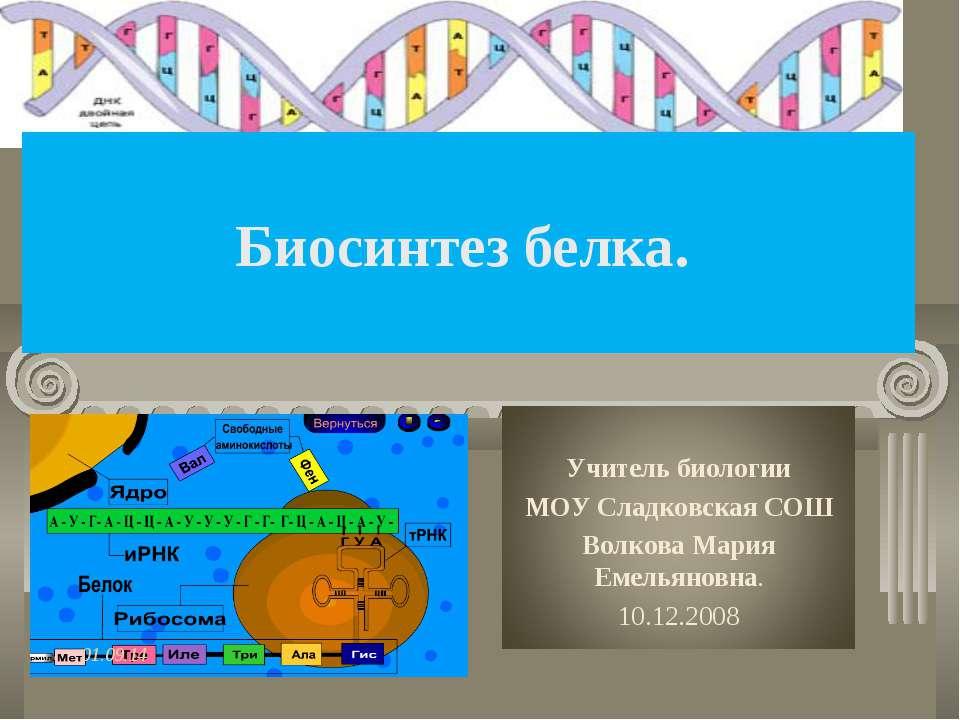 Биосинтез белка. *
