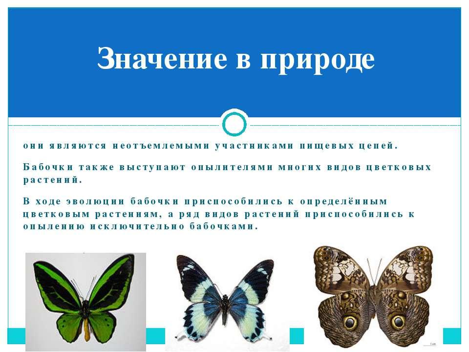 они являются неотъемлемыми участниками пищевых цепей. Бабочки также выступают...