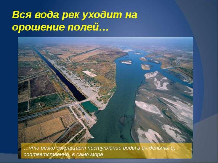 Судоходство перестало существовать, т. к… …вода отступила на многие километры...