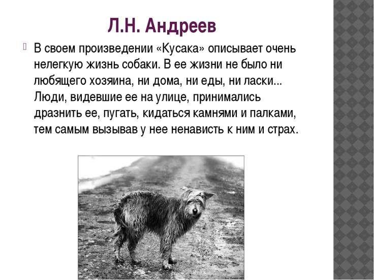 Л.Н. Андреев В своем произведении «Кусака» описывает очень нелегкую жизнь соб...