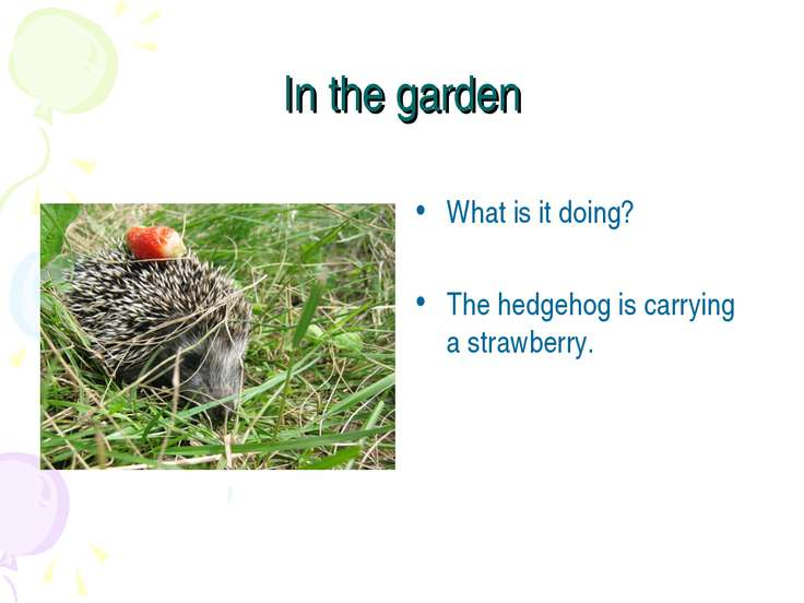 In the garden What is it doing? The hedgehog is carrying a strawberry.