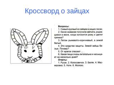 Кроссворд о зайцах