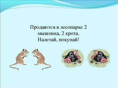 Продаются в лесопарке 2 мышонка, 2 крота. Налетай, покупай!