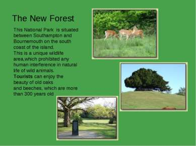 The New Forest This National Park  is situated between Southampton and Bourne...