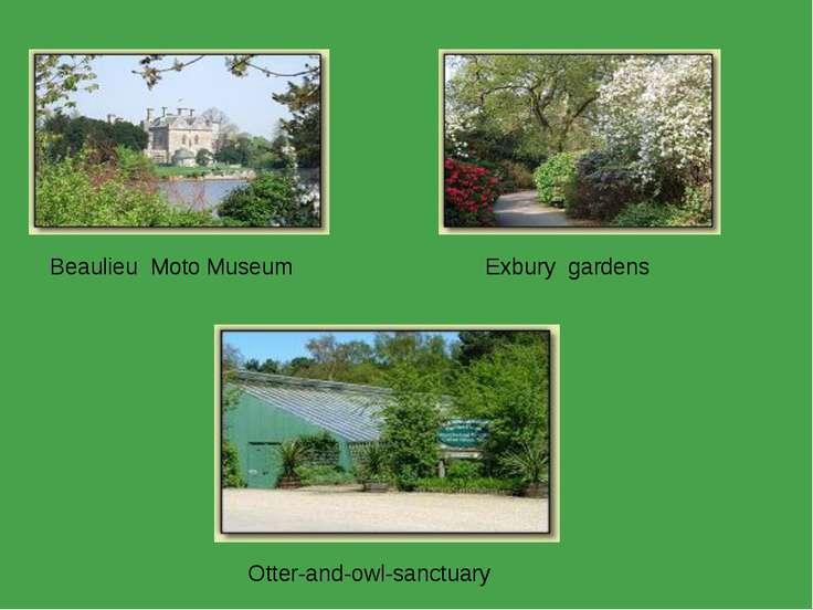 Beaulieu Moto Museum Exbury gardens Otter-and-owl-sanctuary