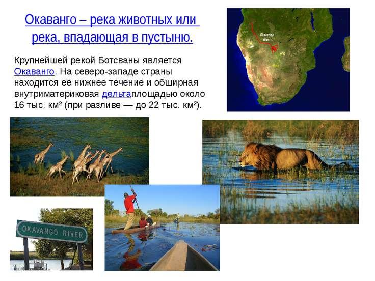 Крупнейшей рекой Ботсваны являетсяОкаванго. На северо-западе страны находитс...