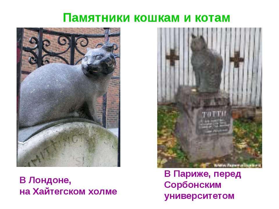 Памятники кошкам и котам В Лондоне, на Хайтегском холме В Париже, перед Сорбо...