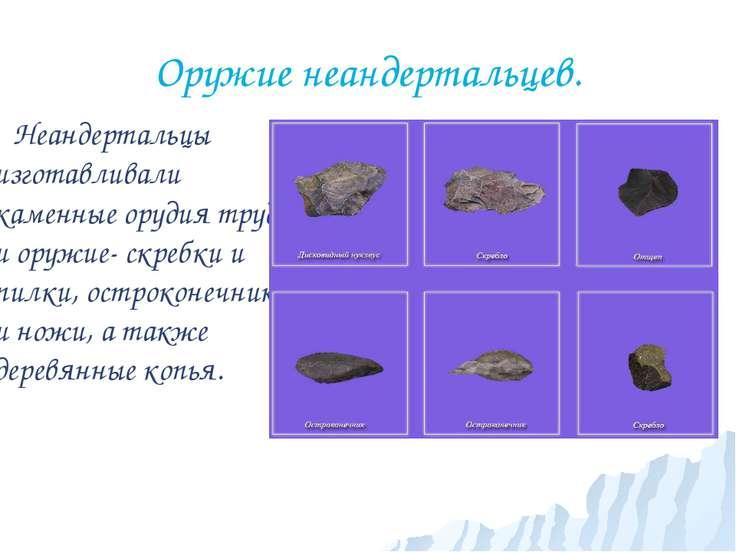 Оружие неандертальцев. Неандертальцы изготавливали каменные орудия труда и ор...