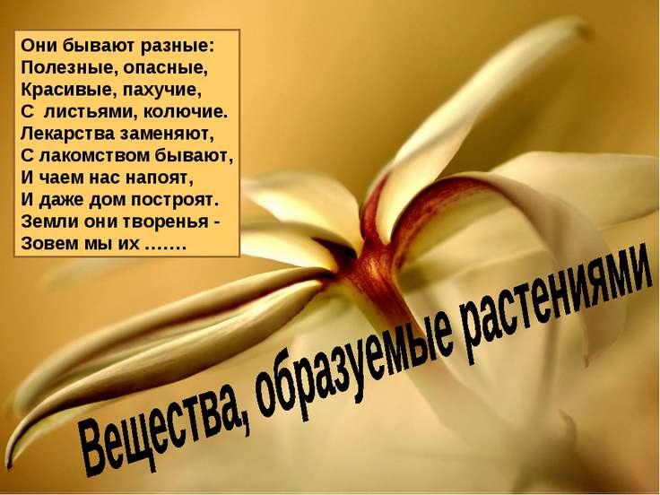 Они бывают разные: Полезные, опасные, Красивые, пахучие, С листьями, колючие...