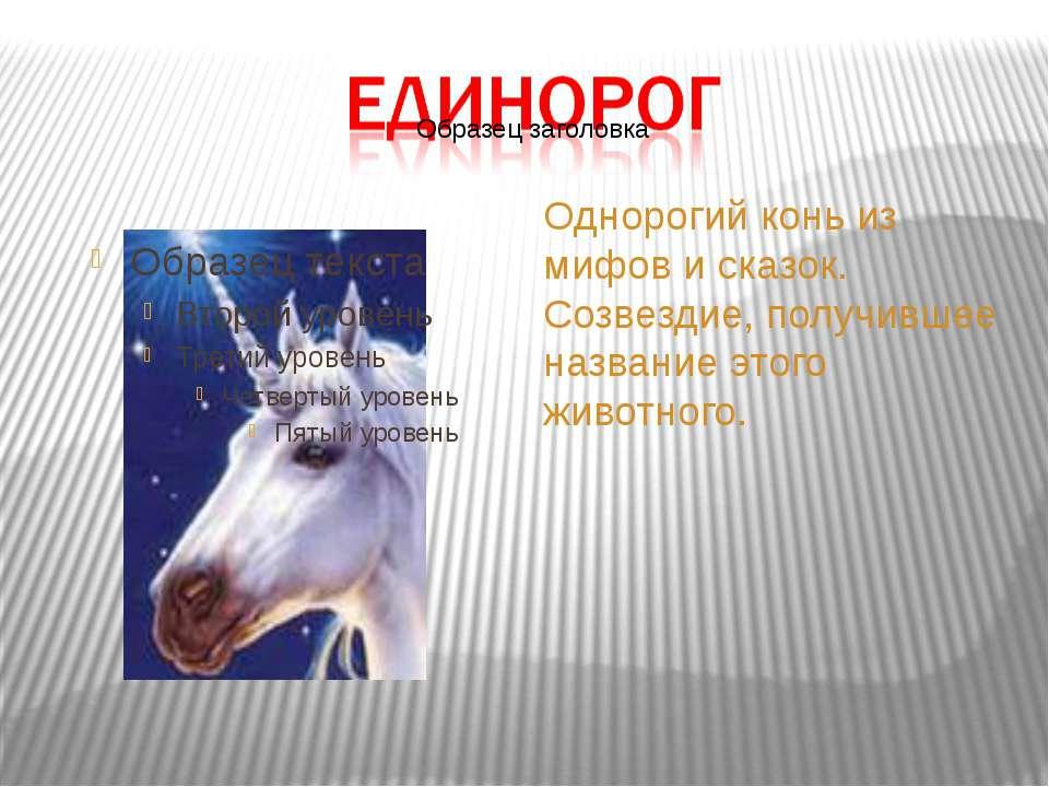 Однорогий конь из мифов и сказок. Созвездие, получившее название этого животн...