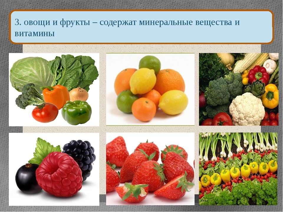 3. овощи и фрукты – содержат минеральные вещества и витамины