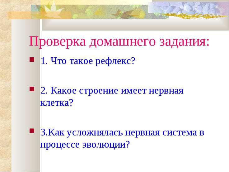 Проверка домашнего задания: 1. Что такое рефлекс? 2. Какое строение имеет нер...