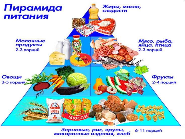 Реферат на тему здоровое питание по физкультуре 8553