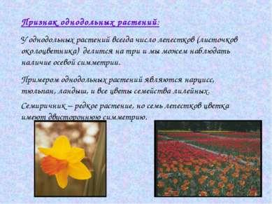Признак однодольных растений: У однодольных растений всегда число лепестков (...