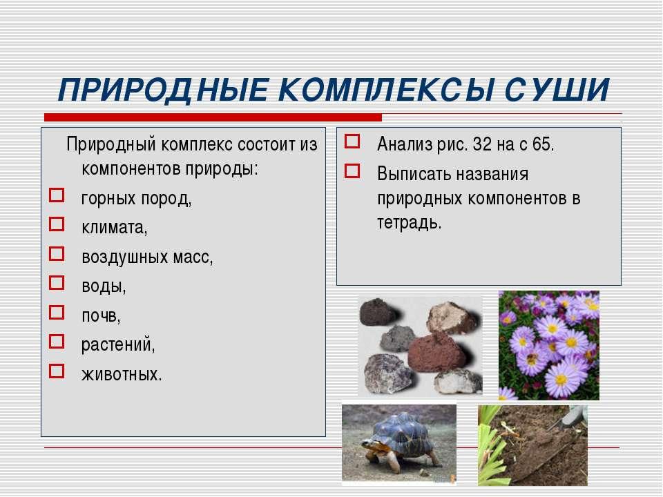 ПРИРОДНЫЕ КОМПЛЕКСЫ СУШИ Природный комплекс состоит из компонентов природы: г...