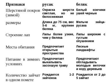 Признаки русак беляк Шерстяной покров (зимой) Окраска шерсти светлая, но не б...