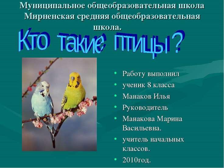 Муниципальное общеобразовательная школа Мирненская средняя общеобразовательна...